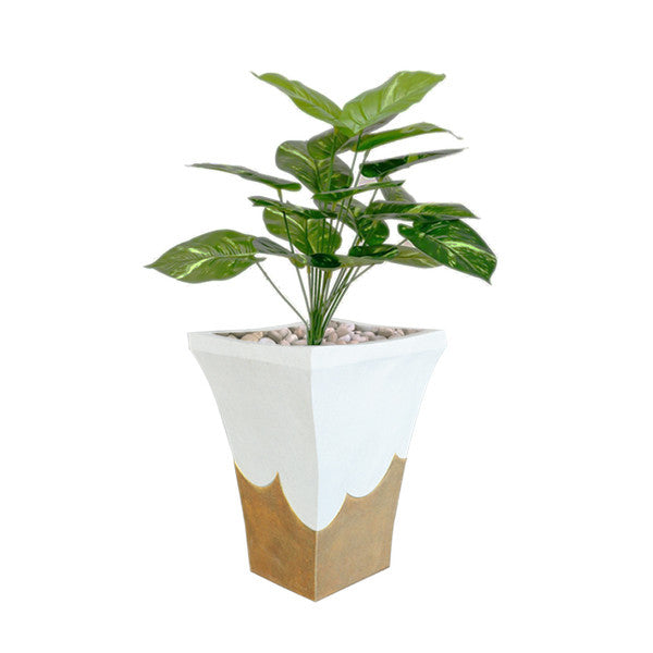 Decorative white planter with plant