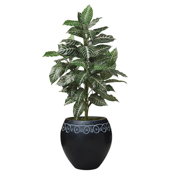 Medium sized Decorative Planters