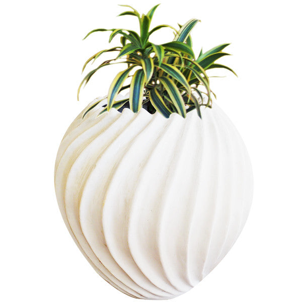 Suzhal Planter | Decorative Planter Pots