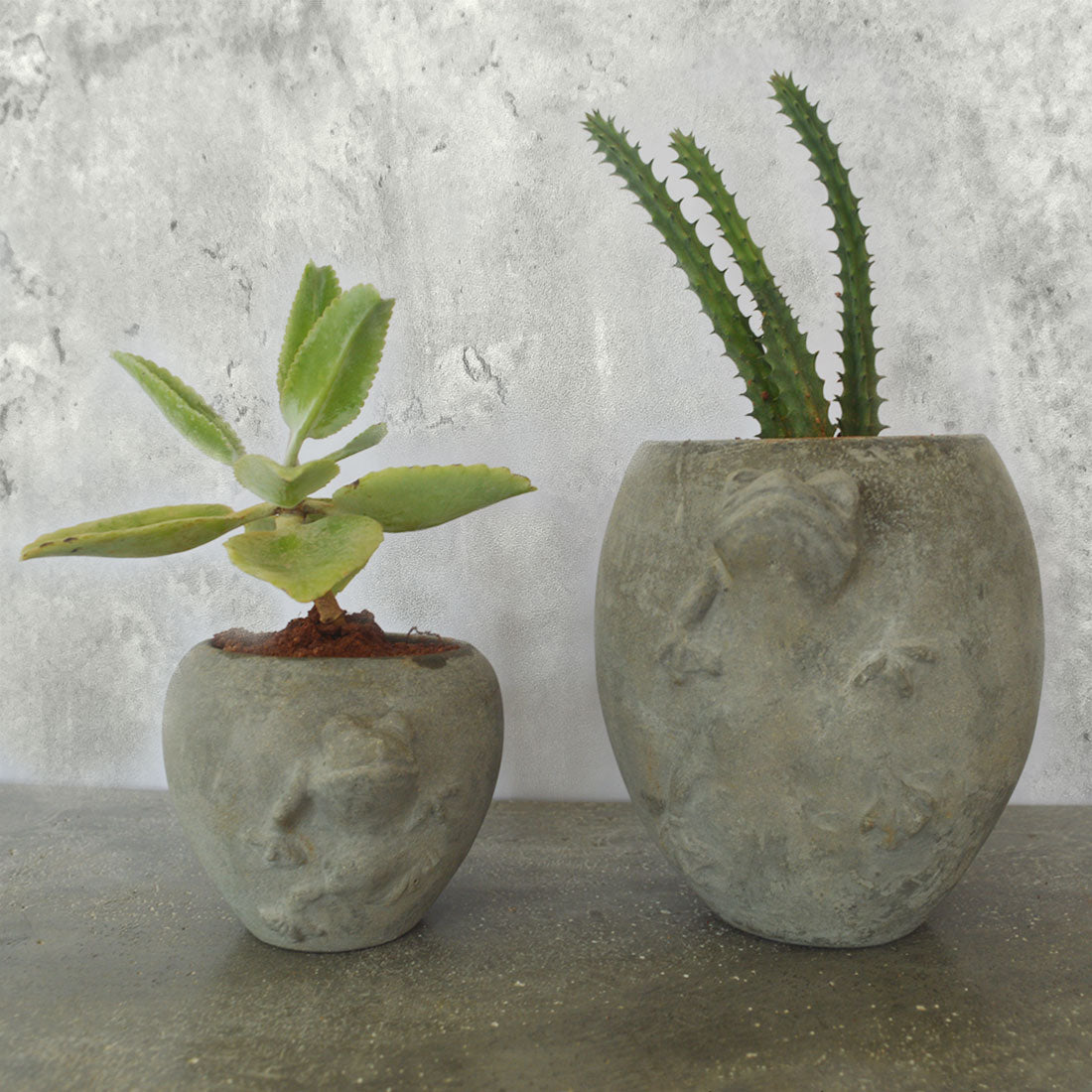 Therai table top planters for decorations