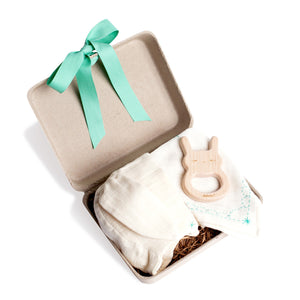 Bunny Hat, Bib and Teether Gift Set