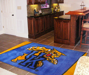 Kentucky Wildcats 4X6 Rug