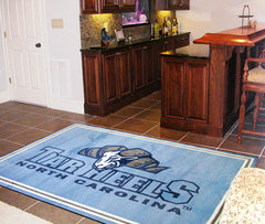 North Carolina Tar Heels 4X6 Rug