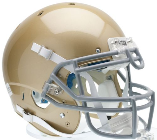 Notre Dame Fighting Irish Schutt Replica Helmet