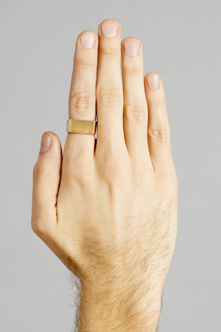 Mens Bar Ring
