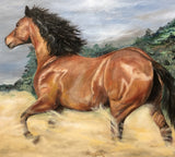 Dusty Horse, Oil