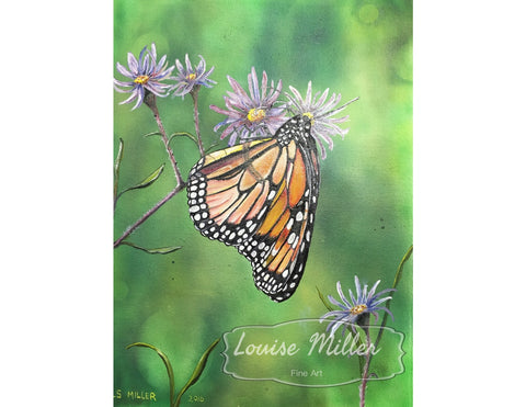 Butterfly, Sold