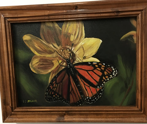 Monarch, Oil