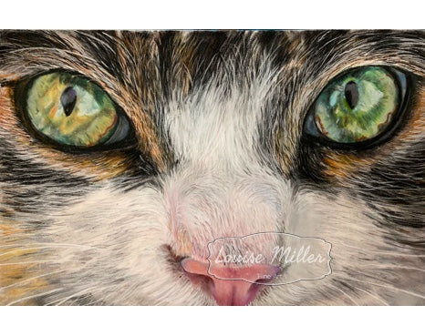Cat eyes original pastel