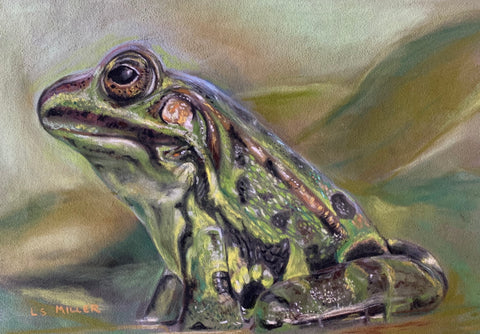 Froggy, original pastel
