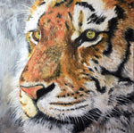 Eyes of the Tiger original oil painting
