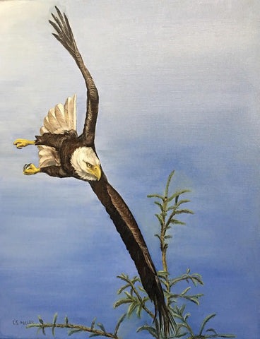 Soaring Eagle, Oil