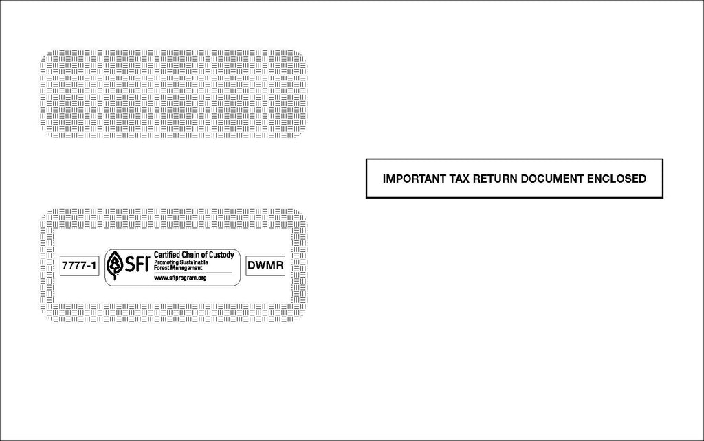 Double Window 1099 Envelope (DWMR)