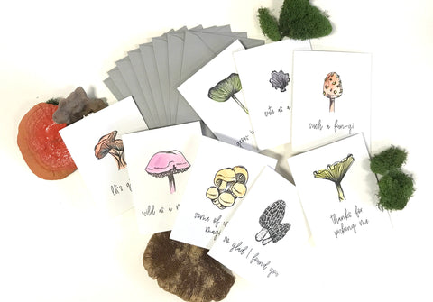 shroom cards - box set