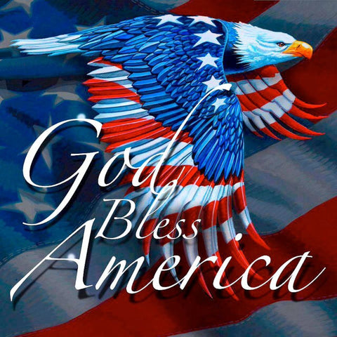 god bless america - american flag - bald eagle
