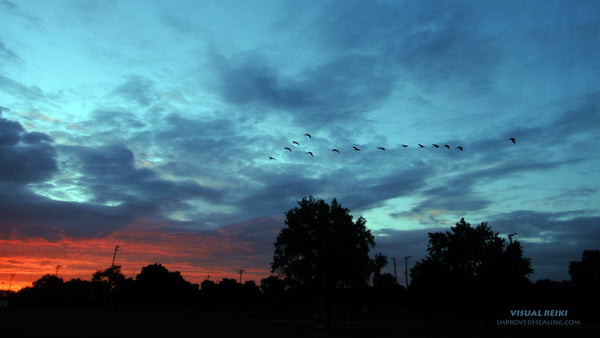 "Visual Reiki photo - ""Sunset-Flying-Geese"""