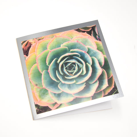 California Succulent and Poppy Foil Greeting Card - Choice of 5 Images or Assortment Pack of 10