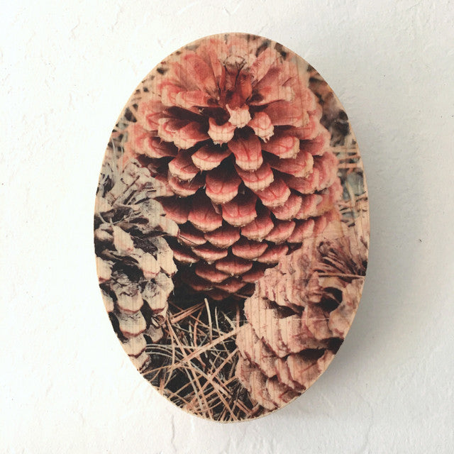 Tahoe Pinecone Trio - Oval
