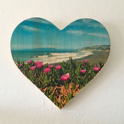 Iceplant View: Pacifica Pier - Heart