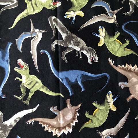 Cloth Face Mask - #129 - Dinosaurs on Black