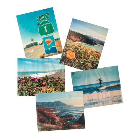 Postcard Set - Coastal Nature Pack