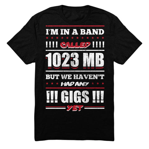 I'm In A Band Called 1023 MB But We Haven't Had Any Gigs Yet