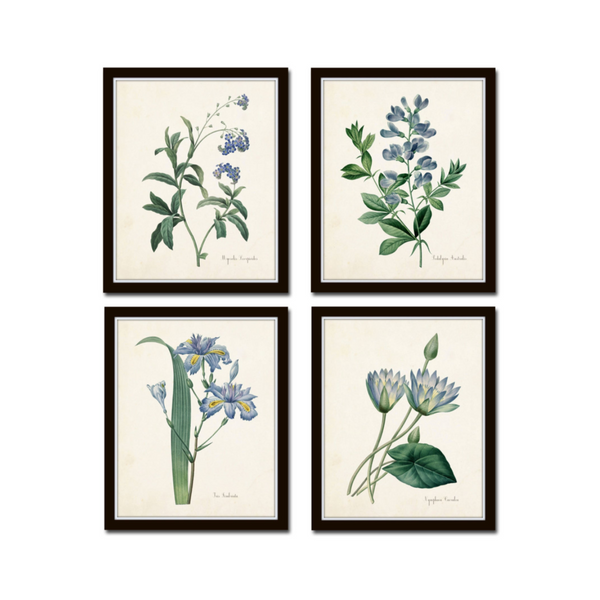 Blue Botanicals Set of 4