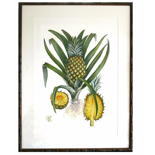 Bethany Linz - British India - Hand signed print - Pineapples
