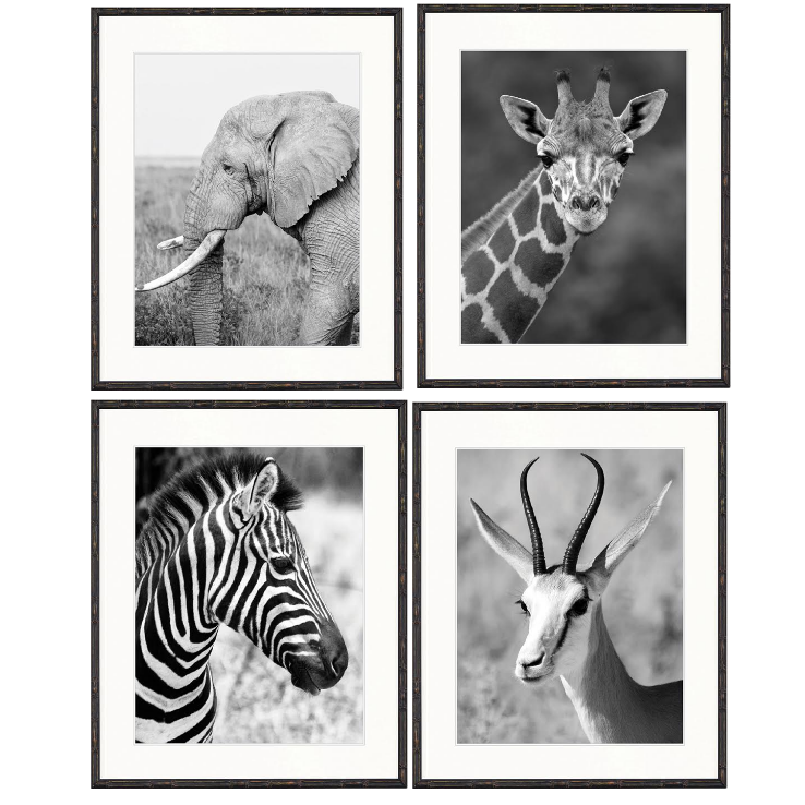 Arthouse Collection - Safari Stripes