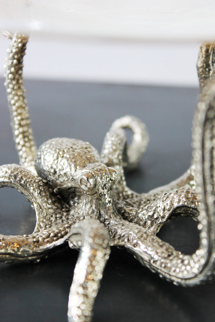Silver plated octopus with shell