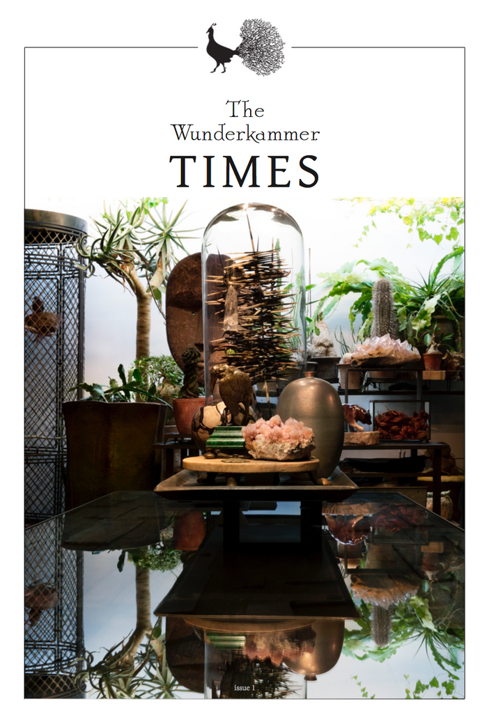 The Wunderkammer Times Issue 1
