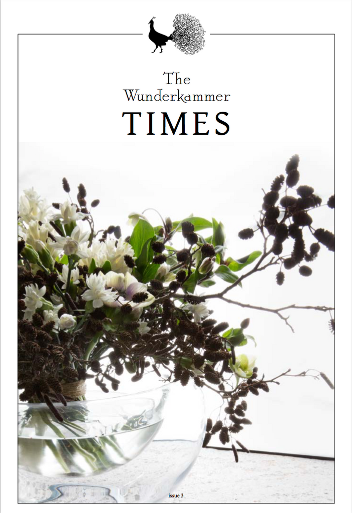 The Wunderkammer Times Issue 3