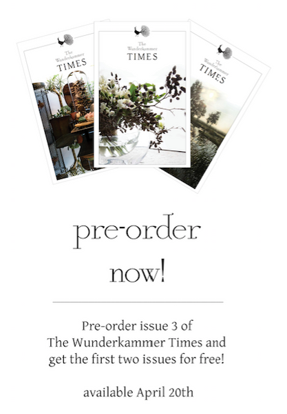 pre-order The Wunderkammer Times Issue 3