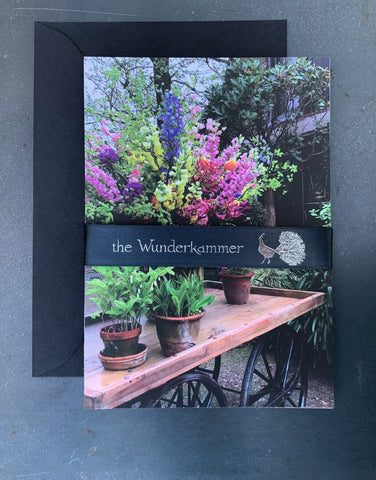 The Wunderkammer Urban Farm postcard set