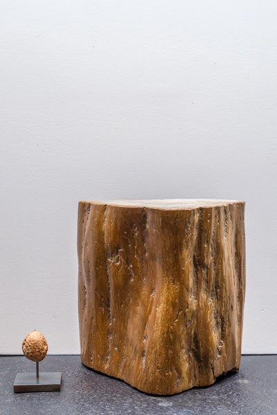 Object - Fossil Wood (light Brown)