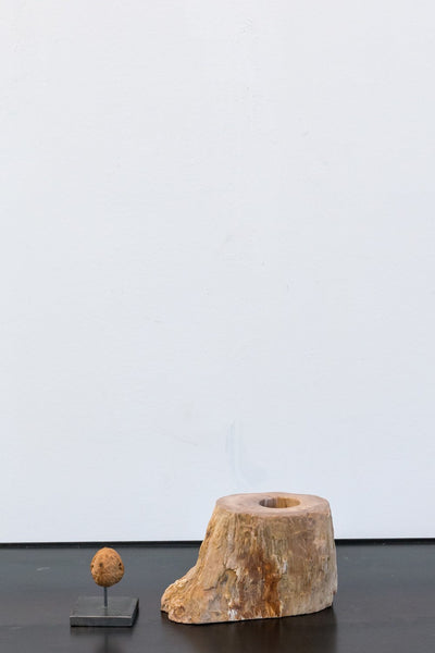 Object - Petrified Wood Tealight Holder