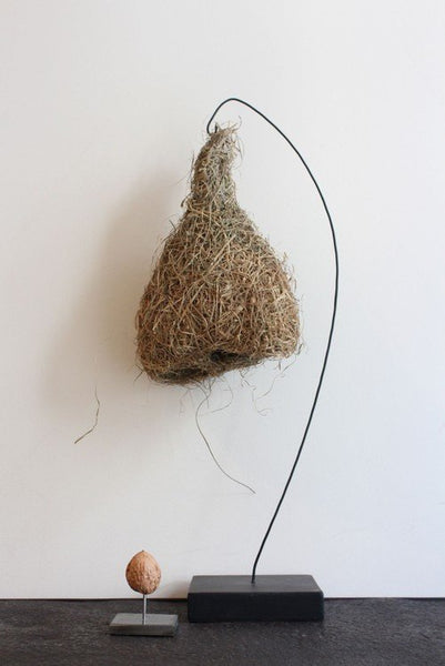 Object - Weaver Bird Nest