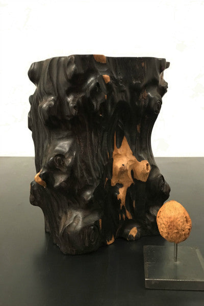 tree trunk vase pot conifer wood