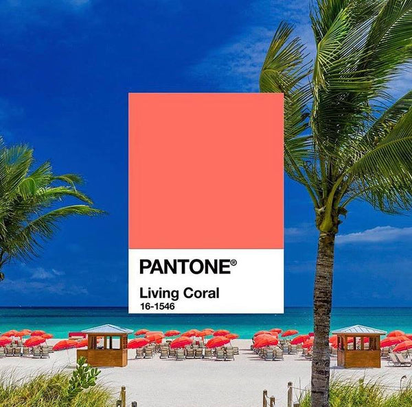Coral announced as the Colour Inspo for 2019!