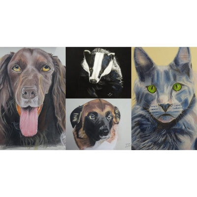 Bespoke Pet Portraits by Ian Worth