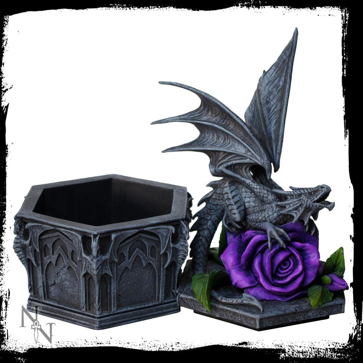 Dragon beauty box, open