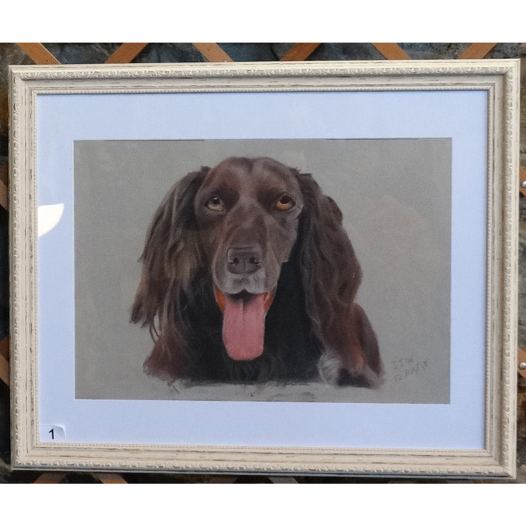 Red setter by Ian Worth Framed