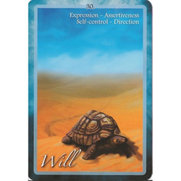 Chakra Insight oracle, example card: Will
