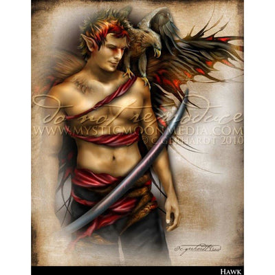 Hawk, Warrior Fae print,