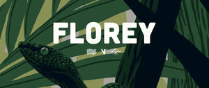 Jurassic Park Clever Girl Florey Official Licensed Screen Print Movie Poster Vice Press Bottleneck Gallery