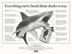 Jaws Infographic