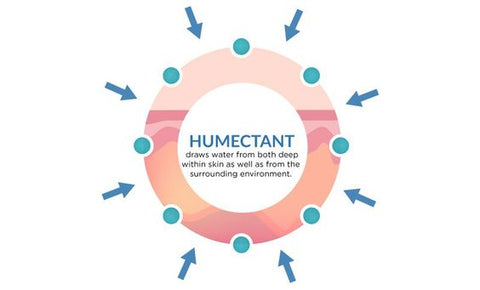 humectant and how it helps skin to draw moisture