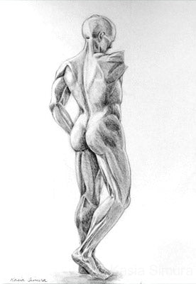 Statue Study - Pencil study by Kasia Simura