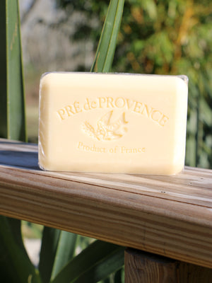 Agrumes Soap Bar