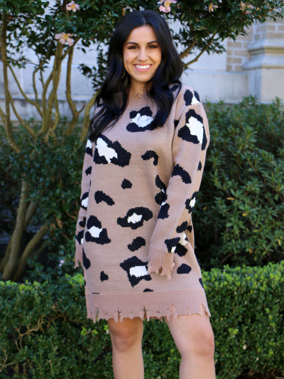 Putting It Wildly Leopard Sweater Dress